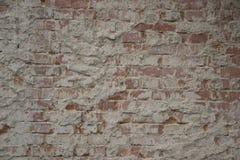 Textur för kal vägg Arkivbilder