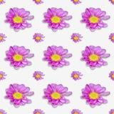 Textur för konstbakgrundstapet med rosa färgblomman Vektor Illustrationer