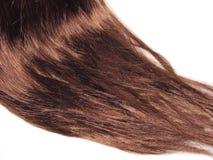 textur för mörkt hår för bakgrund arkivbilder
