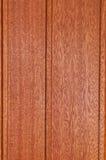 Textur för mahognyväggpanel Royaltyfri Fotografi