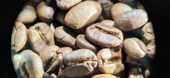 Textur för makro för foto för kaffebönor royaltyfri foto