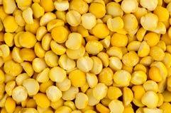 Textur för makrocloseupbakgrund av gula torkade delade ärtor Royaltyfri Foto