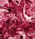textur för marmor 5 Arkivbilder