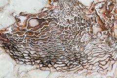 Textur för mineraler för Pamukkale kalkonjärn arkivfoton