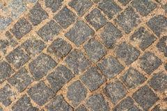 textur för mossrocksten arkivbilder