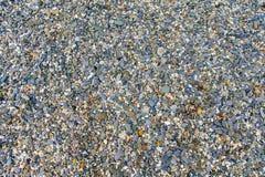 textur för mossrocksten Färgrika kiselstenar som ligger på strandbakgrund royaltyfria foton