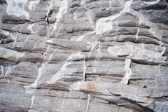 textur för mossrocksten grå sten Royaltyfri Fotografi