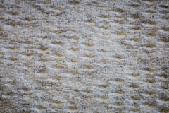 Textur för pappers- handduk Arkivbild