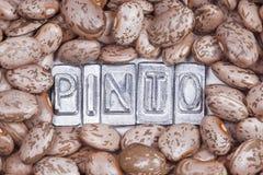 Textur för Pintobönor Arkivfoton