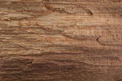 Textur för rått trä och naturlig modell för design och garnering royaltyfria bilder