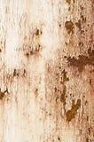 textur för rost för rest för djupare fokus för stång vänster Royaltyfria Bilder