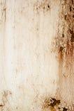 textur för rost för rest för djupare fokus för stång vänster Royaltyfria Foton