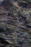 textur för sten för detalj för arkitekturbakgrundsclose upp Arkivbild