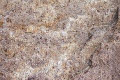textur för sten för facade för arkitekturbakgrundsdetalj Arkivfoto