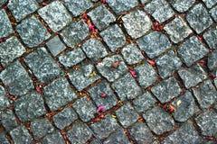 Textur för stenvägbakgrund Arkivbild
