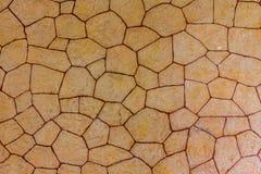 Textur för stenvägg, brun textur för tegelstenvägg Royaltyfria Bilder