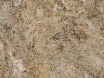 Textur för stenvägg i bruna signaler Arkivfoton