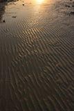 textur för strandsandsoluppgång Royaltyfri Bild