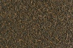 textur för svart tea Arkivfoto