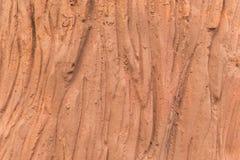 Textur för trädskäll som göras från cement Fotografering för Bildbyråer