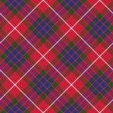 Textur för tyg för sömlös modell för Fraser tartan diagonal Royaltyfria Foton