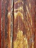 Textur-gammalt trämålat skyddande figurerat bräde för målarfärg brunt med flöden av wood bärnstensfärgad kåda Detalj av träplanko Royaltyfria Foton
