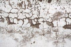 Textur målad betongvägg Royaltyfria Foton
