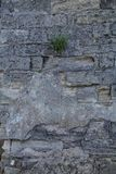 textur masonry Fragment av den forntida väggen vertikalt arkivbilder