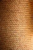 Textur med repet Arkivbilder