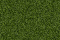 Textur Moss Royalty Free Stock Photo