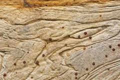 Textur och modeller i ett avsnitt av utsatt sandsten vaggar royaltyfri fotografi