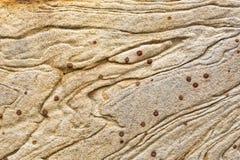 Textur och modeller i ett avsnitt av utsatt sandsten vaggar fotografering för bildbyråer
