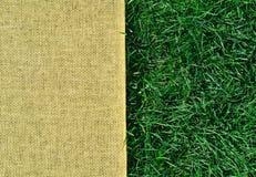 Textur och sackings för grönt gräs Royaltyfri Fotografi