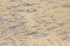 Textur på stenen Arkivbilder