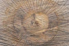 Textur såg snittet det gamla trädet som bakgrund Arkivfoto