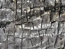 Textur - sprucken gammal svart hudsonbay baserad waterproofing Royaltyfria Bilder