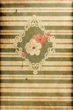 Textur - Vingate garnering Arkivbild