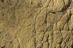 Textura à terra Fotografia de Stock Royalty Free