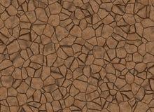 Textura à terra rachada seca. teste padrão de relevo abstrato Imagens de Stock