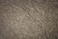 Textura à terra suja rachada Imagens de Stock