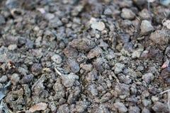 Textura à terra/textura de madeira/textura da pedra Imagem de Stock