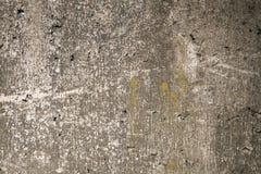 Textura áspera cinzenta musgoso do muro de cimento Imagens de Stock