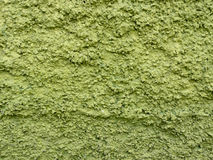 Textura áspera de la pared verde Imágenes de archivo libres de regalías
