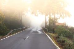 Textura áspera del camino Manera negra del asfalto con la línea blanca en el centro Salida del sol, España, Fuerteventura Fotos de archivo
