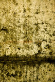 Textura 49 Imagenes de archivo