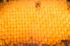 Textura abstracta de la cera de la abeja Foto de archivo