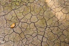 Textura abstracta de la grieta en fondo del suelo seco Fotografía de archivo