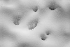 Textura abstracta de la nieve Imagen hermosa del invierno landscape Imagen de archivo