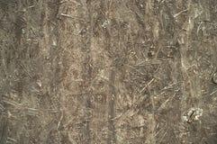 Textura abstracta del color gris Fotografía de archivo libre de regalías