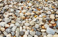 Textura abstracta del jardín de piedra marrón Foto de archivo libre de regalías